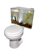 Gadget Nation Gadgets: Aquariass